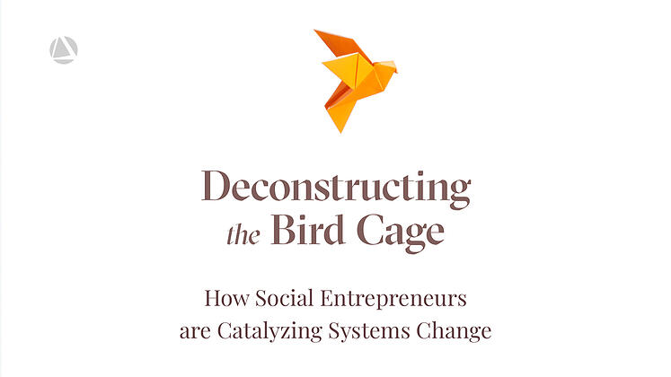 Announcing a New Article on How Social Entrepreneurs are Catalyzing Systems Change